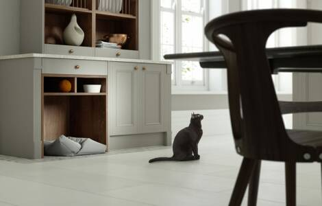 How to make your kitchen pet friendly
